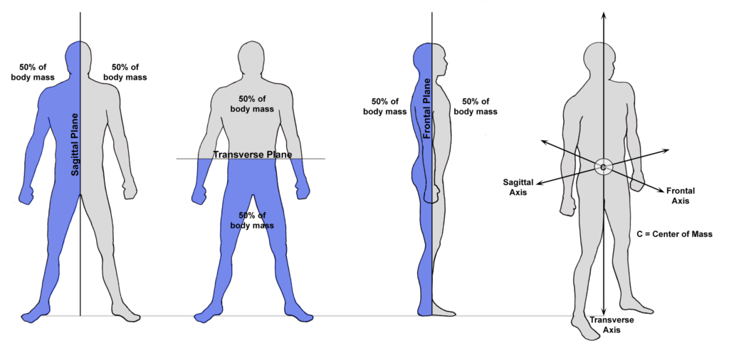 A diagram showing the body's cardinal planes (sagittal, transverse and frontal), as well as the body's center of mass; i.e., the point at which all three planes intersect.