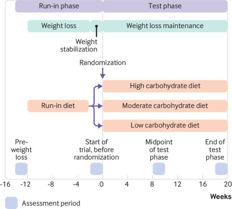 "A graphic depicting the design and timelines of the study ""Effects of a Low Carbohydrate Diet on Energy Expenditure During Weight Loss Maintenance: Randomized Trial."""