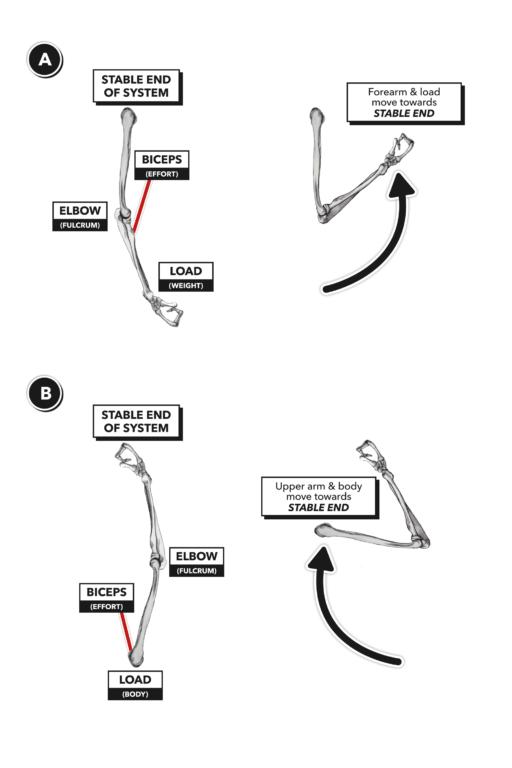 lever change 2