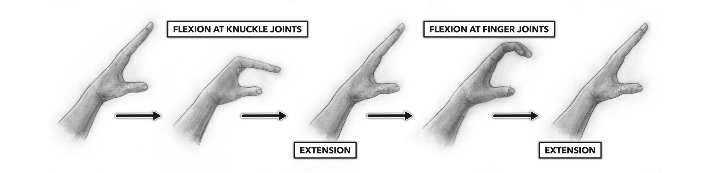 CrossFit | Movement About Joints, Part 4: The Hand and Fingers