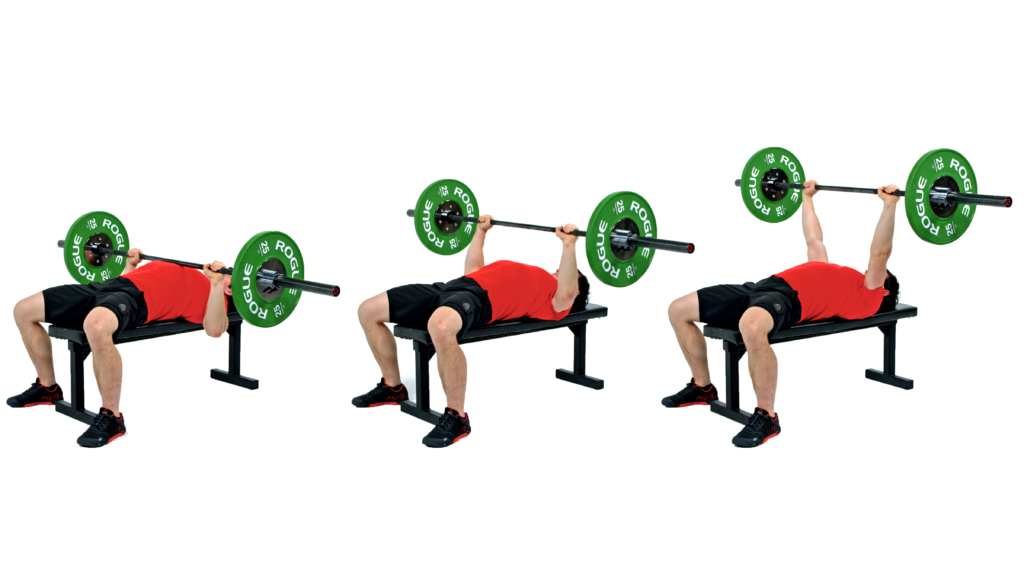 2553785991484c bench press