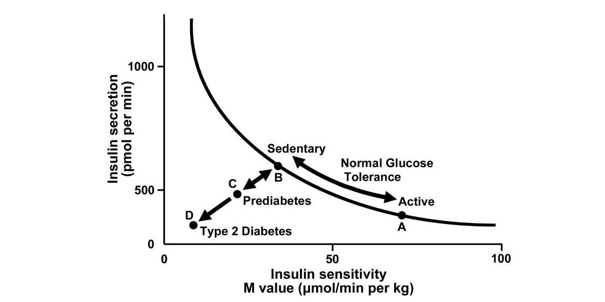 Crossfit Metabolic Syndrome And Insulin Resistance Underlying