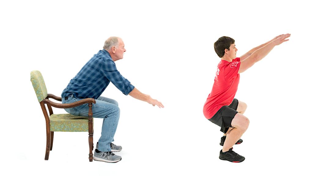 Chair stand vs. air squat