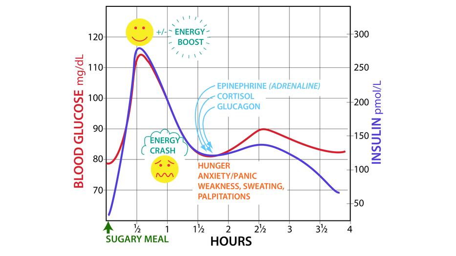 Glucose-Insulin Response