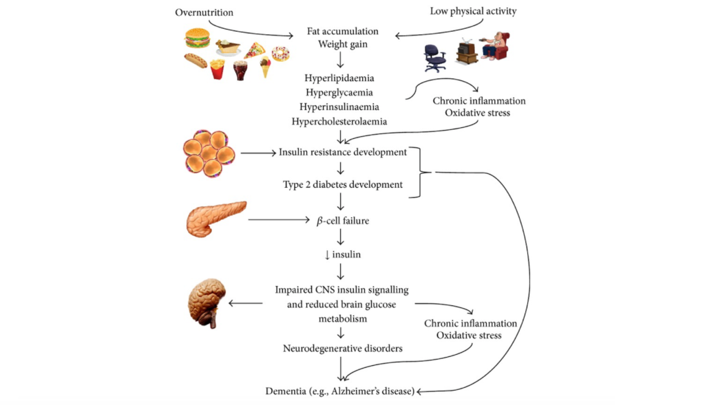 Metabolism and Neurodegeneration