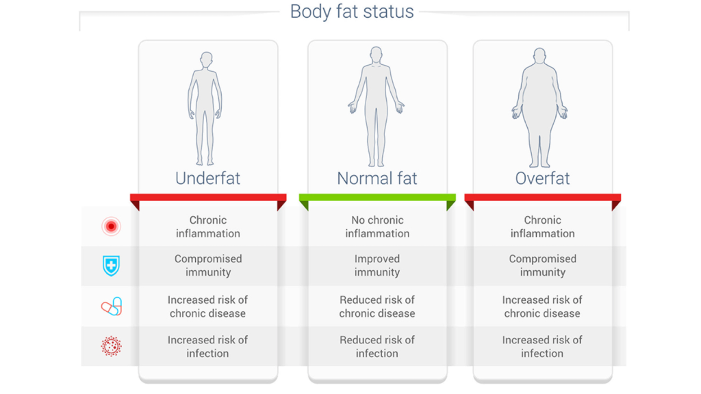 Body Fat and Disease Risk
