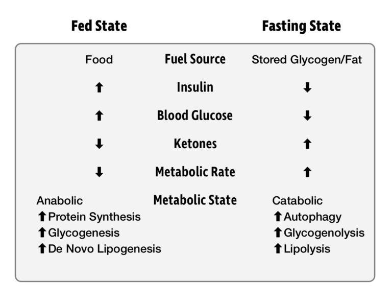 Research Zone Diet acute 1-week