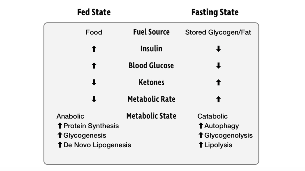Fed/Fasted State