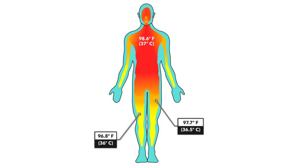 Core Body Temperature