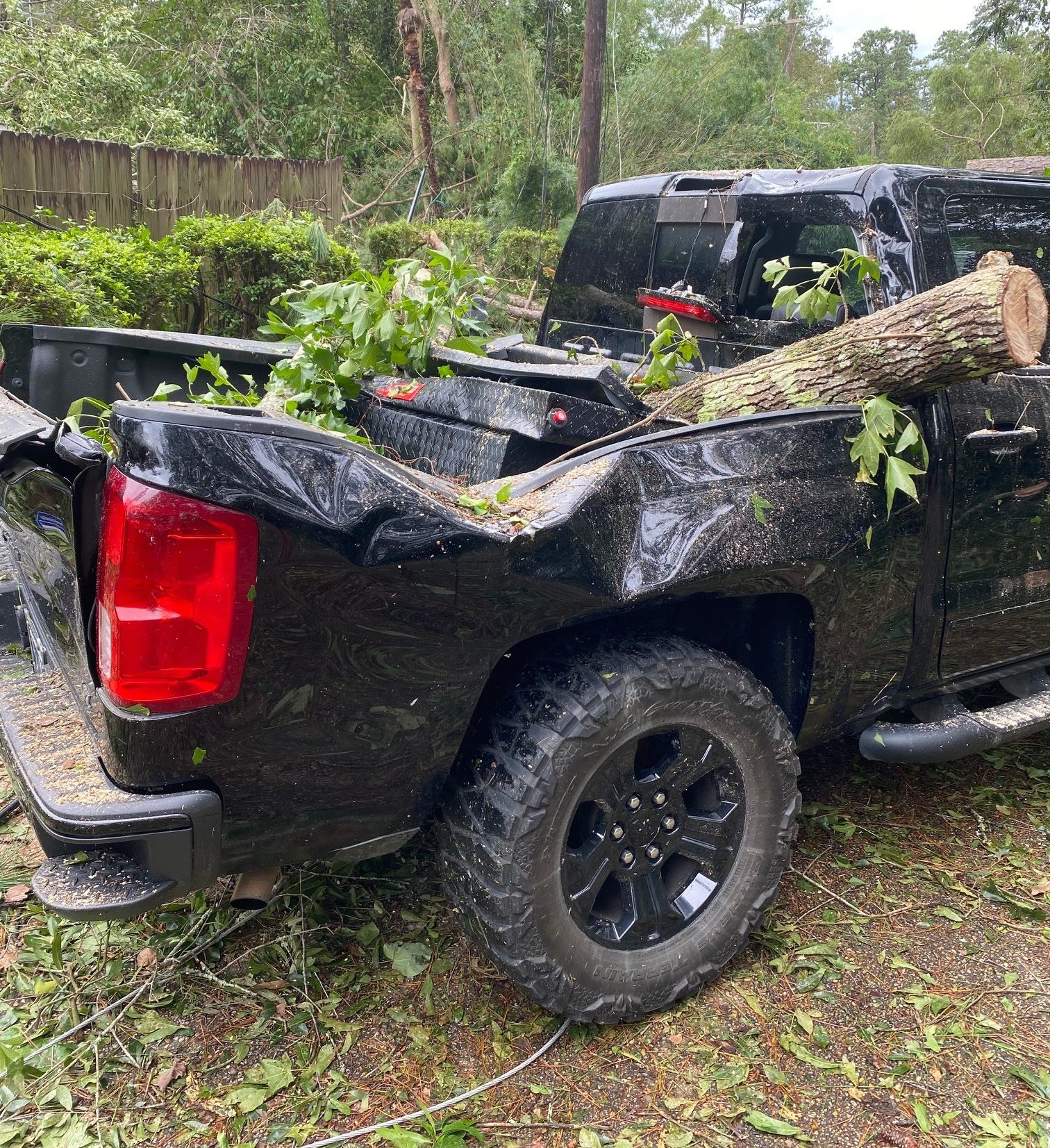 A pick-up truck is crushed by a tree after Hurricane Ida.